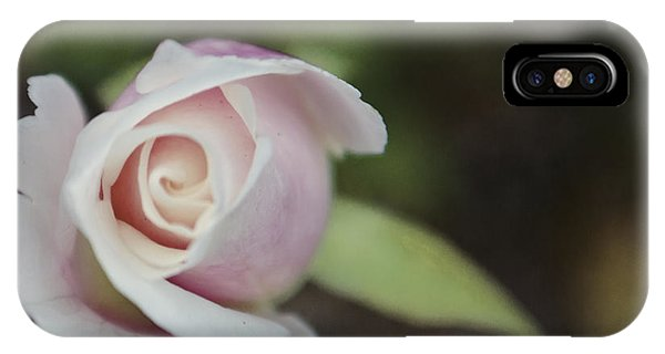 Sweet Pink Rose IPhone Case