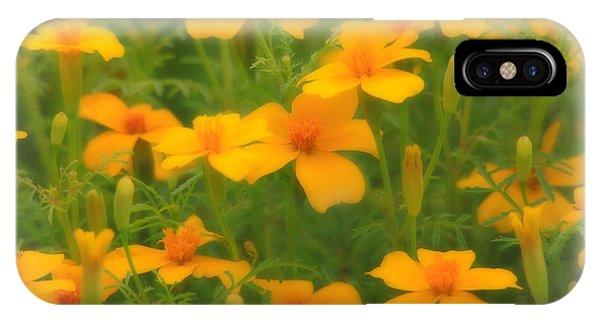 Sweet Summer Marigolds IPhone Case