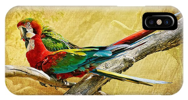 Macaw iPhone Case - Sweet Sweet Love by Lois Bryan
