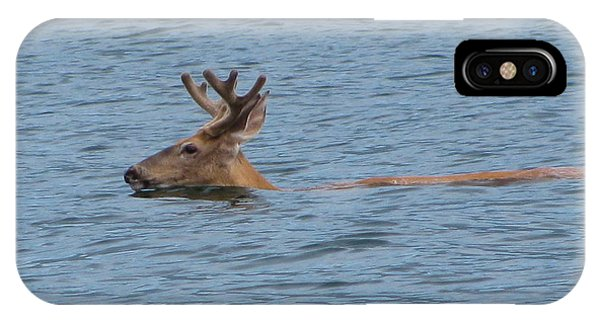 Swimming Deer IPhone Case
