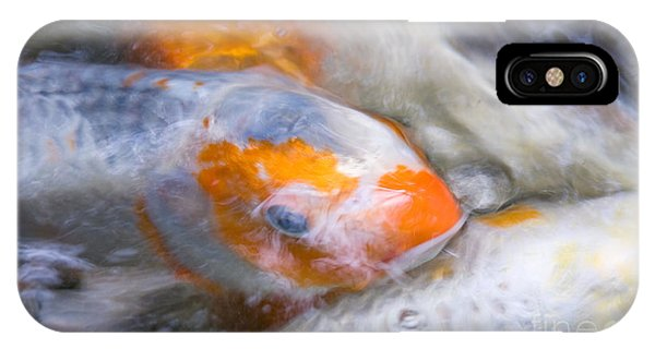 Swirling Koi Carp IPhone Case