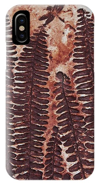 Sword Fern Fossil IPhone Case