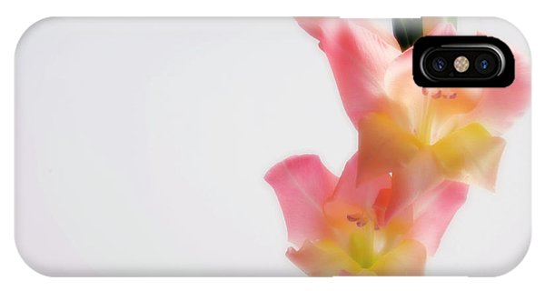 Hybrid iPhone Case - Sword Lily (gladiolus Hybrid) by Maria Mosolova/science Photo Library