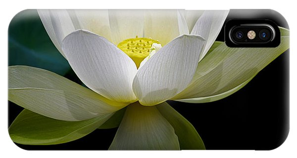 Symbolic White Lotus IPhone Case