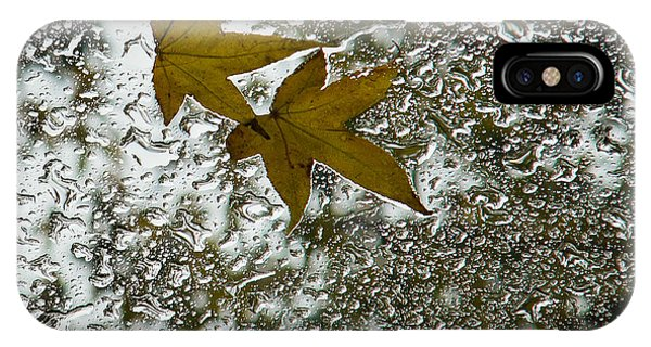 Symbols Of Autumn  IPhone Case