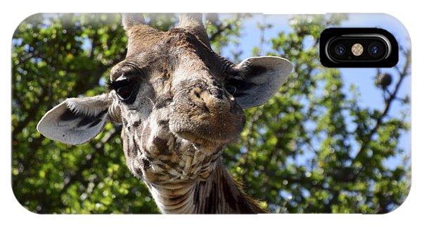 Sympathetic Giraffe IPhone Case