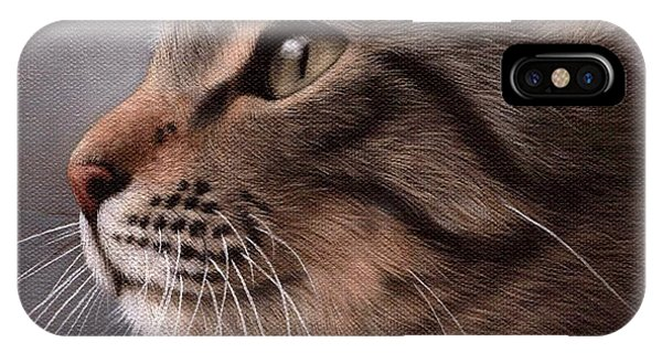 Tabby Cat Painting IPhone Case