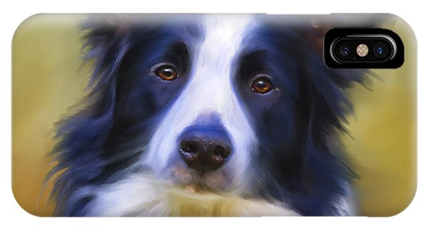 Beautiful Border Collie Portrait IPhone Case