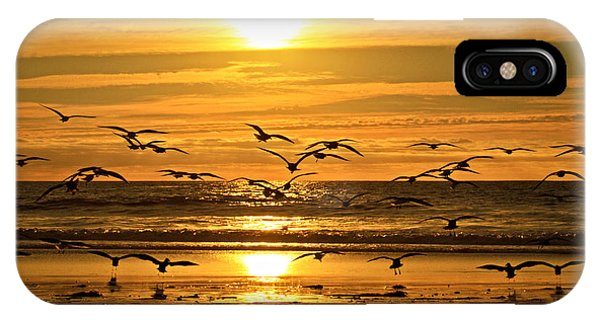 Take Flight At Sunset Phone Case by Donna Pagakis