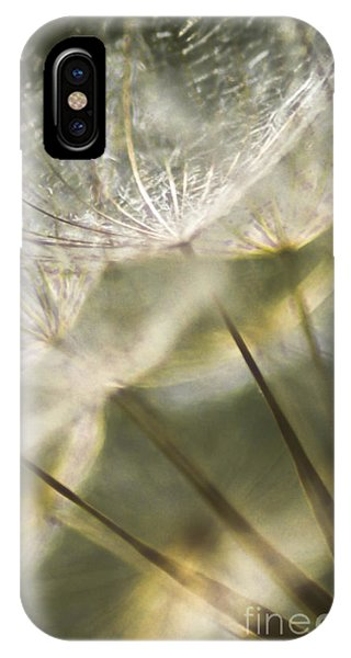 Take Me With You When You Go IPhone Case