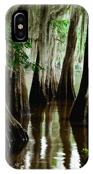 Tall Cypress IPhone Case
