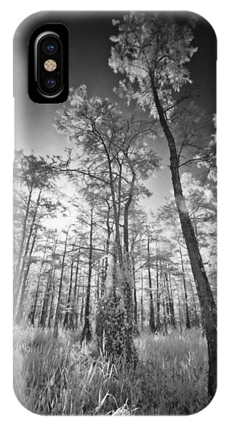 Tall Cypress Trees IPhone Case