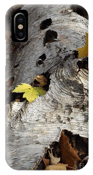 Tall Fallen Birch With Leaves IPhone Case