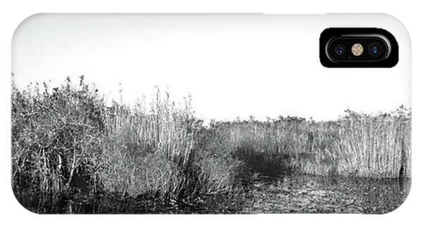 Anhinga iPhone Case - Tall Grass At The Lakeside, Anhinga by Panoramic Images