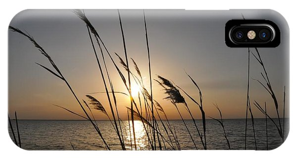 Chesapeake Bay iPhone X Case - Tall Grass Sunset by Bill Cannon