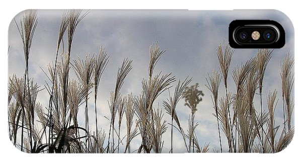 Tall Grasses And Blue Skies IPhone Case