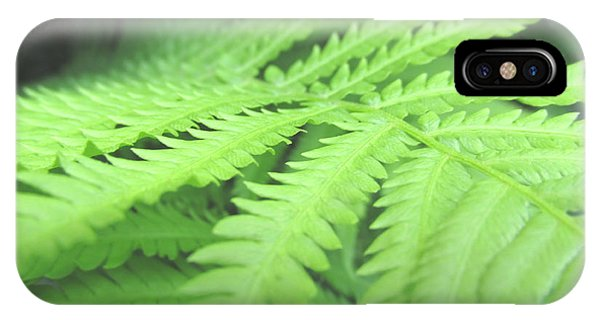 Tall Lady Fern Fine Art Print Green Summer Photograph By Penny Hunt IPhone Case