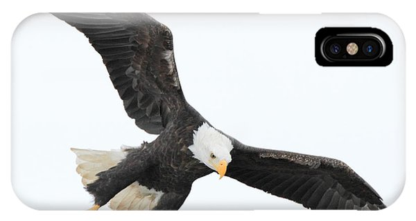Talons Down IPhone Case