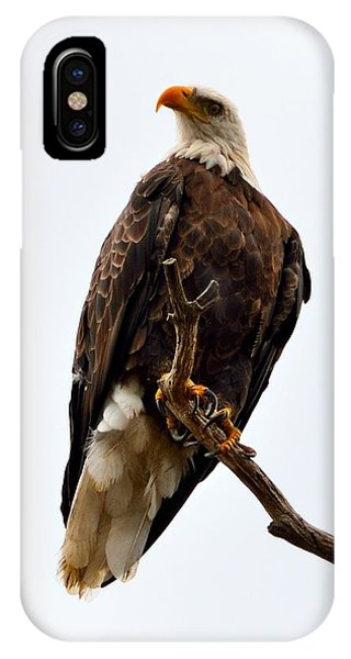 Talons IPhone Case