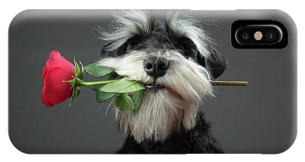 Prairie Dog iPhone Case - Tango Dancer by Adnan Mahmutovic
