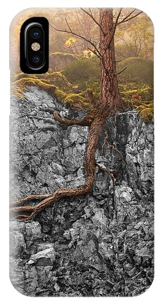 Taproot IPhone Case