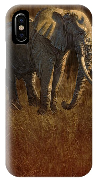 Tarangire Bull 2 IPhone Case