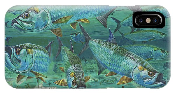 West Bay iPhone Case - Tarpon Rolling In0025 by Carey Chen