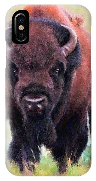 Da105 Tatonka By Daniel Adams IPhone Case