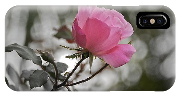 Tea Rose IPhone Case