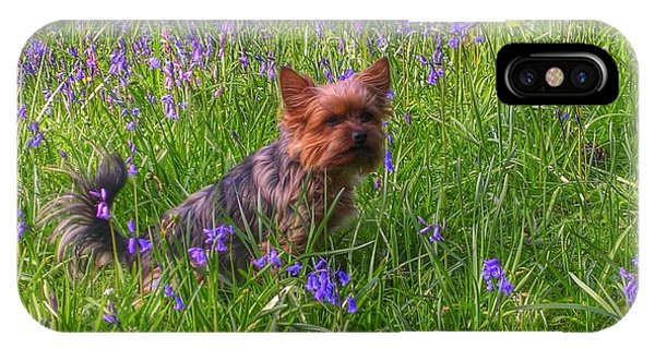 Teddy Amongst The Bluebells IPhone Case