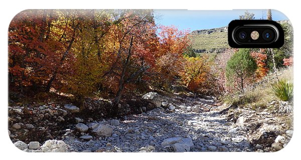 Tejas Trail In Fall IPhone Case