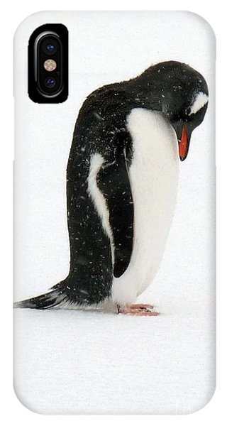 Telephone Bay- Antarctica IPhone Case