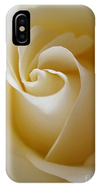 Close Up Floral iPhone Case - Tenderness White Rose 3 by Tara  Shalton