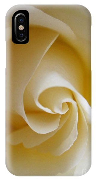 Close Up Floral iPhone Case - Tenderness White Rose 4 by Tara  Shalton