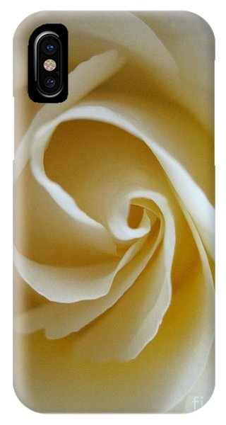 Close Up Floral iPhone Case - Tenderness White Rose 5 by Tara  Shalton