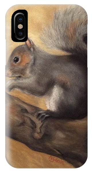 Tennessee Wildlife - Gray Squirrels IPhone Case