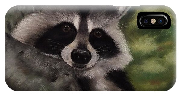 Tennessee Wildlife - Raccoon IPhone Case