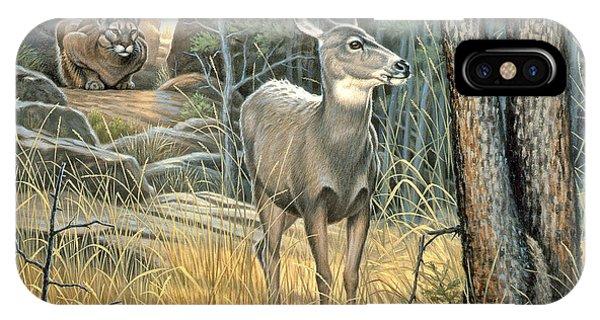 Mule Deer iPhone Case - Tension by Paul Krapf