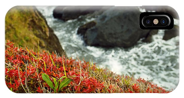 Tepona Point IPhone Case