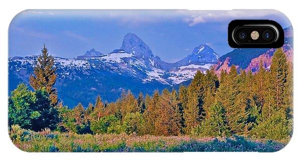 Teton Backside Wildflowers Phone Case by Larry Bodinson