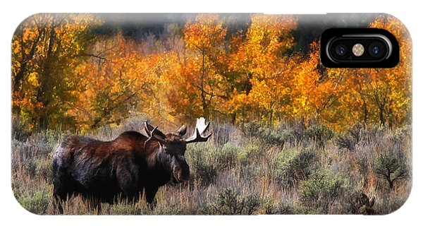Teton Moose IPhone Case