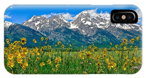 Teton Peaks And Flowers IPhone Case