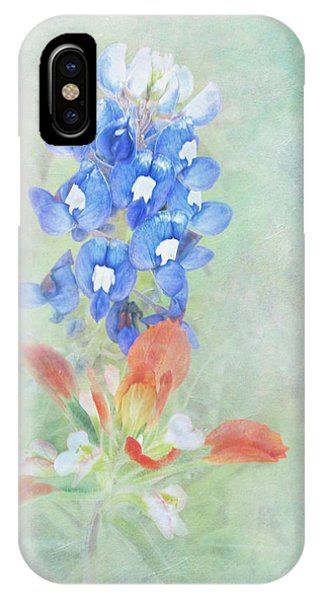 Texas Bluebonnet And Indian Paintbrush IPhone Case