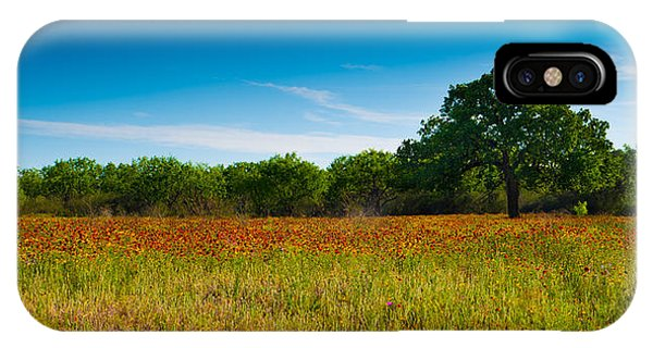 Texas Hill Country Meadow IPhone Case