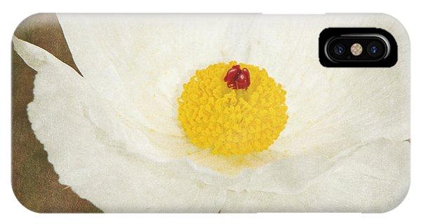 Texas Prickly Poppy Wildflower IPhone Case