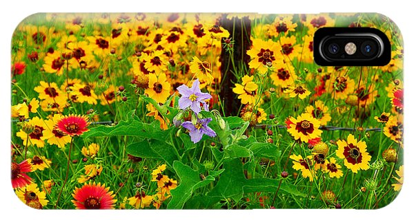 Texas Spring Delight IPhone Case
