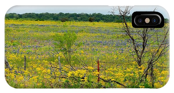 Texas Wildflowers And Mesquite Tree IPhone Case