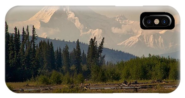 The Alaska Range At Mount Hayes IPhone Case