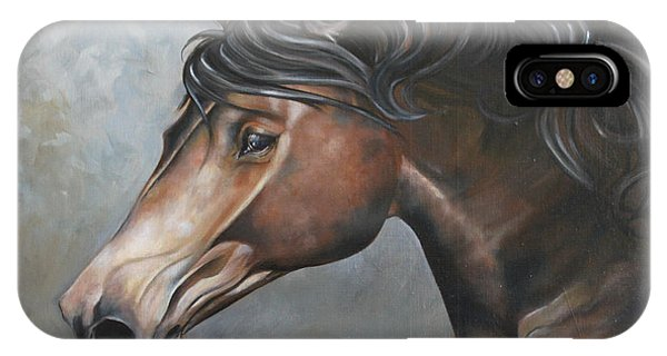 The Andalusian IPhone Case