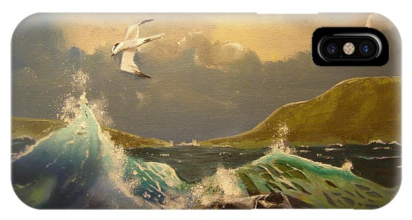 The Arctic Tern IPhone Case